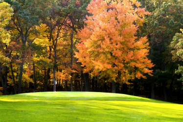 Golf in Fall