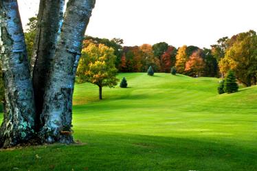 SCV_golf2-copy